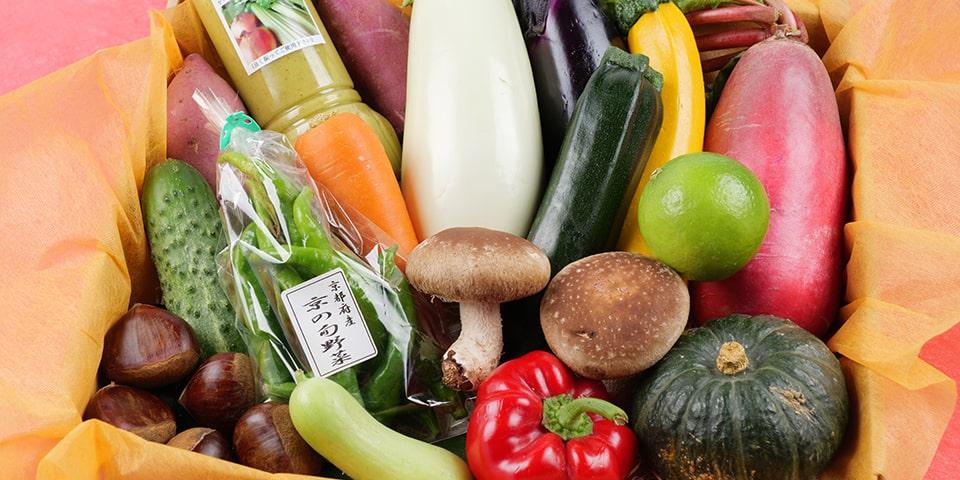 旬の野菜を旬の時期に